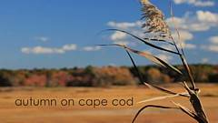 KGTV Cape Cod video thumbnail